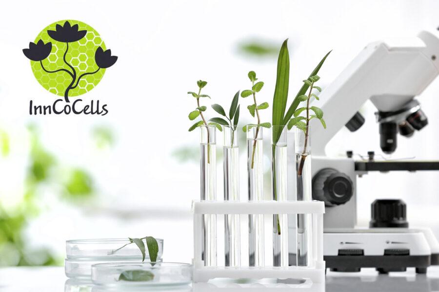 InnCoCells – мащабен европейски, научноизследователски проект с участието на Екомаат